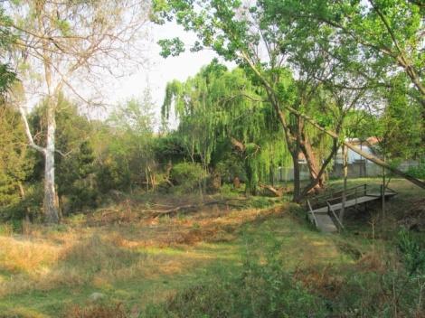 The bridge at the Cumberland Bird Sanctuary.